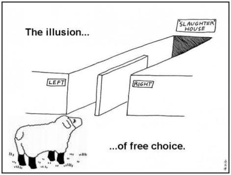 ilusão da escolha